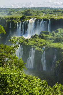 Canvas print - Iguazu Waterfall Through Trees