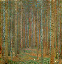 Canvas print - Klimt, Gustav - Fir Forest I