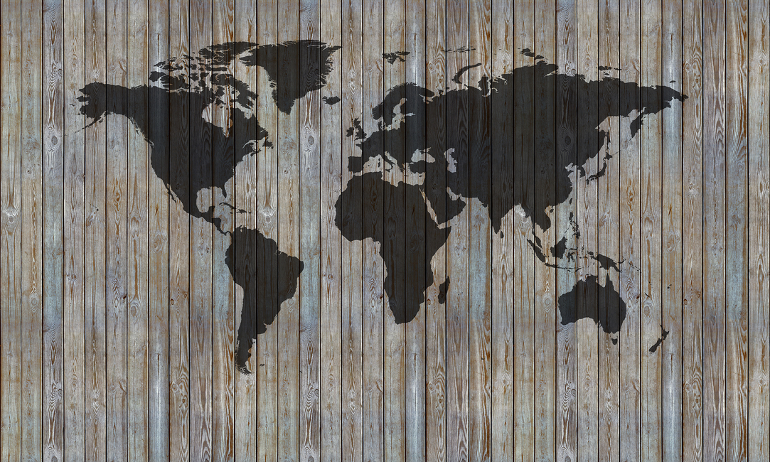 World Map Wooden Plank - Old Silver