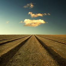 Fototapete - Ploughed Field and Sky