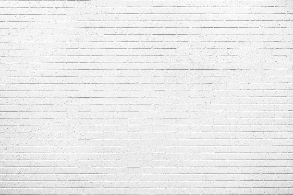 White Natural Brick Wall