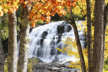 Wall mural - Bond Falls dressed in Autumn colors
