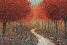 Canvas print - Forest Pathway