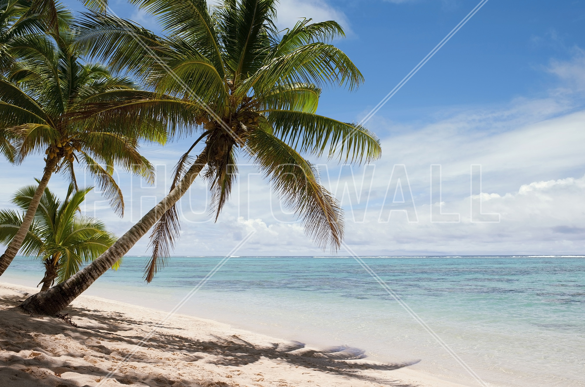 Perfect Tropical Beach Scene