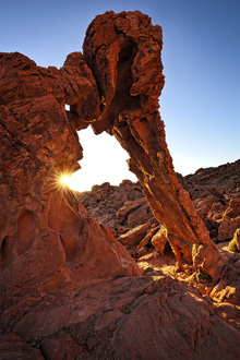 Canvas print - Elephant Rock in the Valley of Fire