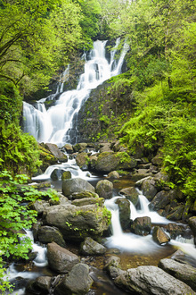 Fototapet - Torc Waterfall