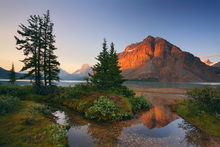 Fototapet - Crowfoot Mountain Reflection
