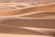 Canvas print - Dunes of the Desert