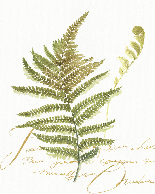 Watercolor Fern