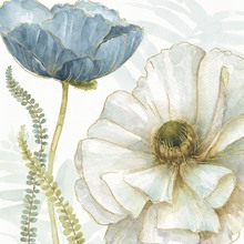Canvas print - White Poppy