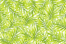 Wall mural - Green Formation