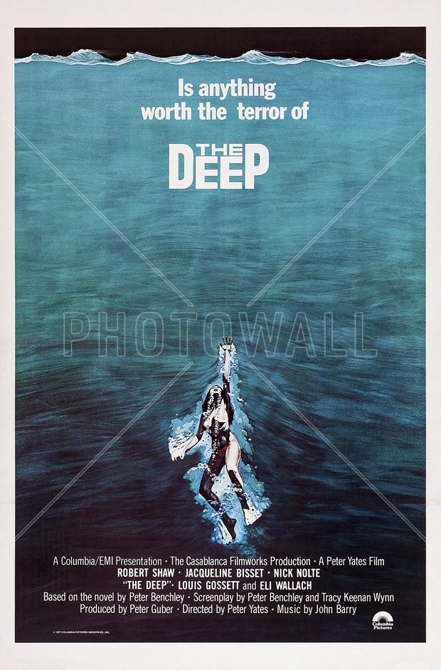 Vinyl movie posters worth anything
