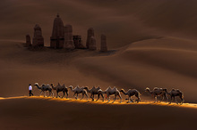 Canvas print - Castle and Camels