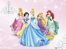 Wall mural - Disney Princess - Pink