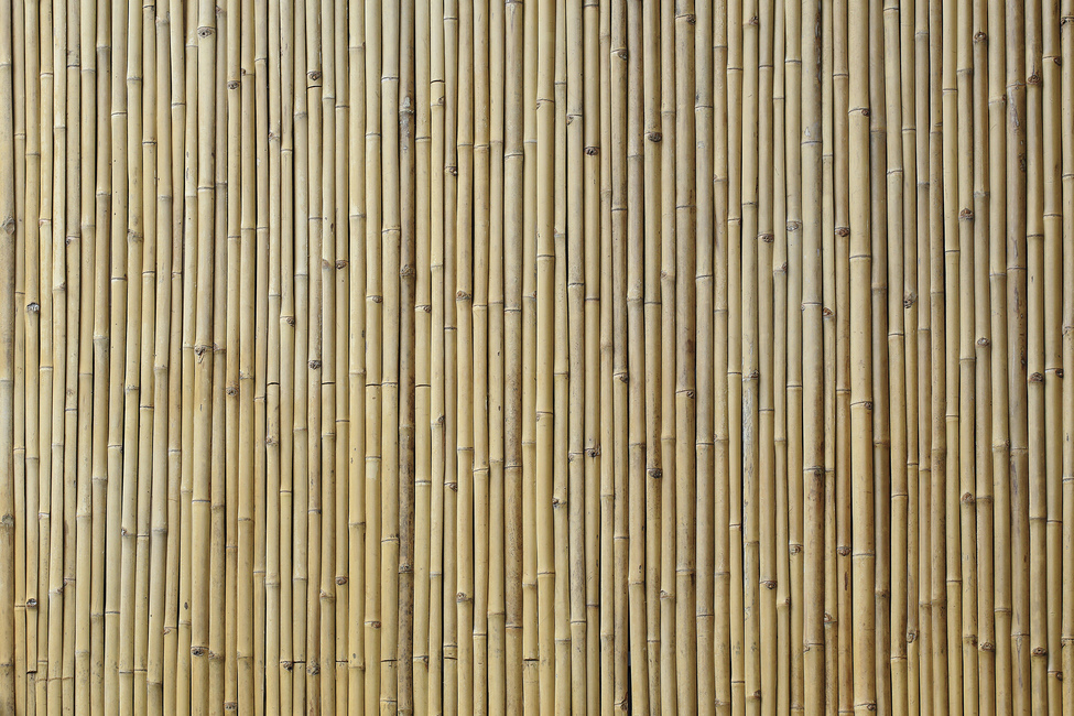 Bamboo Texture Wall Mural Amp Photo Wallpaper Photowall