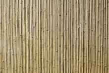 Canvas print - Bamboo Texture