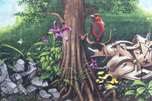 Wall mural - Bird of Paradise Graffiti