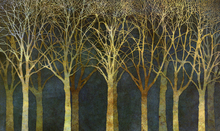 Canvas print - Birch Grove Moonlight