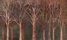 Wall mural - Birch Grove Night Twilight