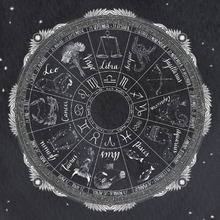 Wall Mural - Night Sky Zodiac