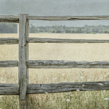 Canvastavla - Meadow Fence