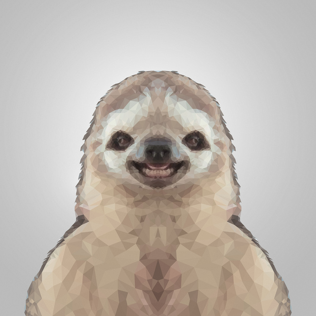 Happy Sloth Gray