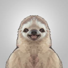 Canvas-taulu - Happy Sloth Gray