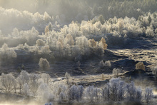Canvastavla - Norwegian Landscape Covered in Autumn Frost
