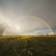 Wall mural - Rainbow over Green Field