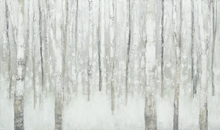 Canvas print - Birches in Winter