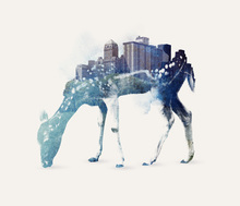 Canvas print - City Deer