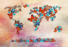 Fotobehang - Butterflies Forming World Map