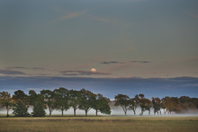 Fototapet - Moon over Swedish Landscape