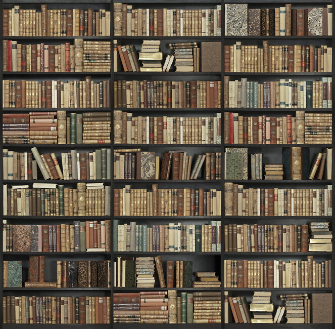 Bookshelf black brown wall mural photo wallpaper for Bookshelf mural wallpaper