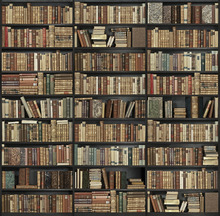 Fototapet - Bookshelf - Black - Brown