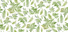 Wallpaper - Fern Green