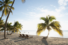 Leinwandbild - Beach in Islamorada in Florida Keys, USA