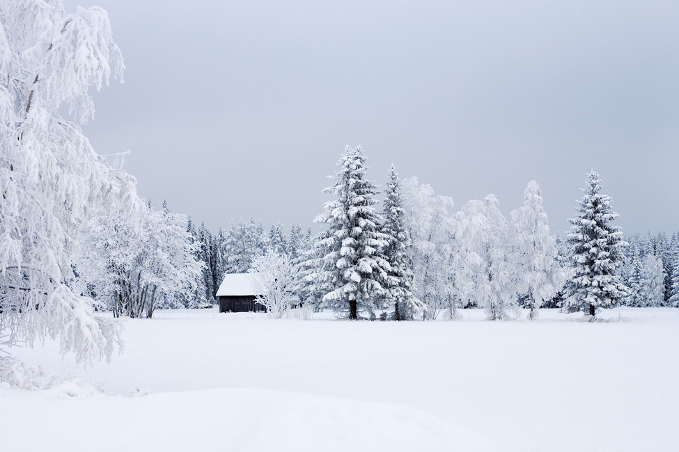 Snow Covered Barn House, Sweden