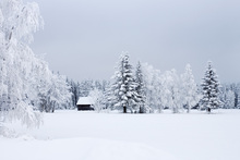 Fototapet - Snow Covered Barn House, Sweden