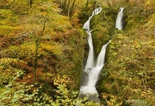 Canvas print - Stock Ghyll Waterfall in Autumn