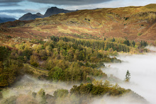 Wall mural - View from Loughrigg