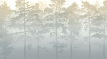 Wall Mural - Misty Pine Forest