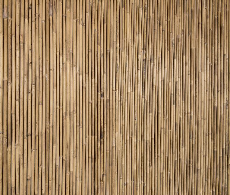 Bamboo Texture Canvas Print Amp Canvas Art Photowall
