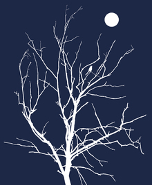 Canvas print - Lonely Bird Night Moon