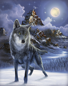 Wall mural - Midnight Wolf