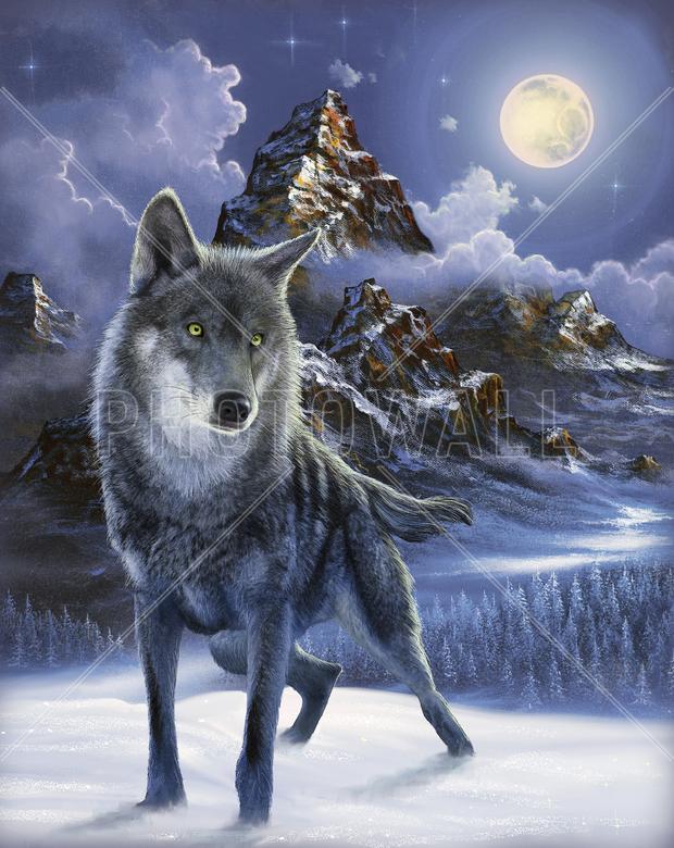 Midnight Wolf Wall Mural Amp Photo Wallpaper Photowall