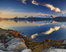 Canvas print - Sunset on the Shore of the Fjord