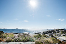 Canvas print - Sea in Bright Sunlight, South Norway