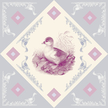 Canvas print - Duck - Pink-Blue