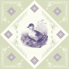 Canvas print - Duck, Purple Green